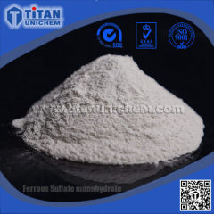 Ferrous Sulphate monohydrate FeSO4.H2O CAS 17375-41-6
