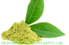 Green tea extract Green tea extract