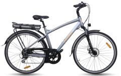 Electric bike city model