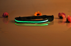 LED Belt LED Belt