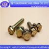 12 Point Flange Bolt / zinc plated / steel