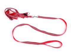 Reflective Dog Collar & Leash set