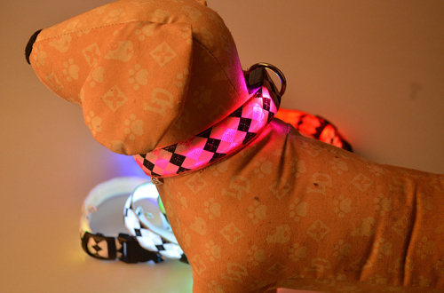 LED Nylon Dog Collar