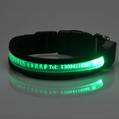 LED Carved Lettering Dog Collar