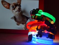 LED Nylon Cartoon Dog Collar