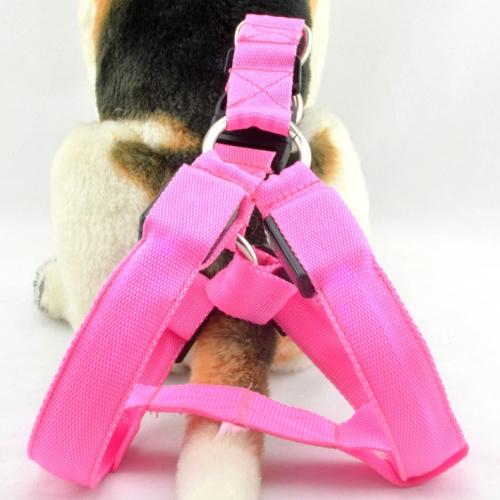 LED Dog Harness led