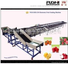 FACTORY OUTLET(FUSHI BRAND) FRUIT&VEGETABLE PROCESSING WASHING WAXING AND GRADING MACHINE