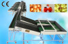 Automatic Electronic Fruit Grading Machine