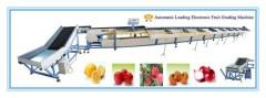 Hydraulic Automatic Loading Electronic Fruit Grading Machine