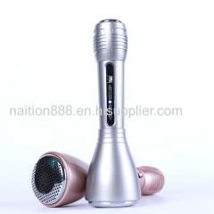 Bigyes wireless bluetooth amplifier stereo karaoke speaker microphone