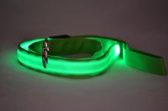 LED Dog Leash led