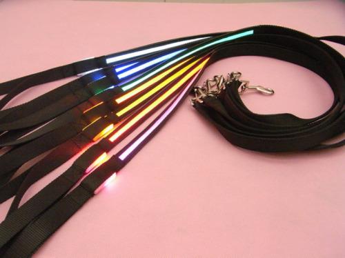 LED Nylon Dog Leash