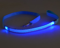 LED Colours Stripe Dog Leash