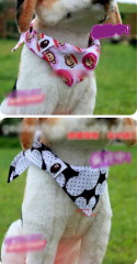 Pet Triangular Bandage pet
