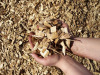 100% Rubber Wood Chips From Vietnam For Making Paper/Power Plant