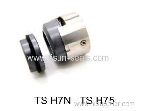 H75 chemical mechanical seals