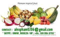 Fresh Frozen Dried PAPAYA/ LONGAN/ BANANA/ MANGOSTEEN/ ARECA NUT