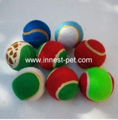 Ball with Teeth Dog Toy
