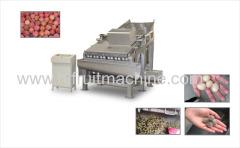 Lychee Litchi Lichee Longan Rambutan Peeling Machine