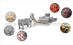 Lychee Longan Rambutan Peeled And Pit Removed Processing Line For Making Canned Or Dry Pulp