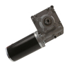 Small Electric AC DC Worm Gear Motor