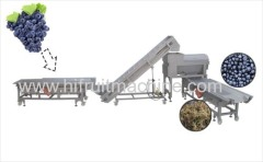 High quality Grape stem removing and smashing machines in Grape Wine Processing Production