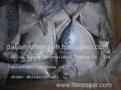 FROZEN FLAT FISH/MOON FISH