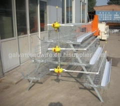 9LCDr-3168 Hot Galvanized Automatic H-type Broiler Chicken Cage