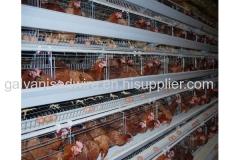 Wire mesh layer H type chicken cage