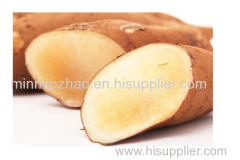 Yacon fruit powder of HUIKE