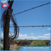 Low price electro dipped galvanized barbed wire
