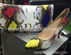 Snake Pattern Upper Shoes with Matching Handbags
