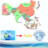 Logistics Service for Custom Clearance