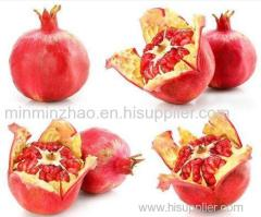Pomegranate Extract with Polyphenols