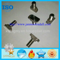 Stainless steel T bolt T bolt T bolts Special T bolt Special T bolts Stainless steel bolt stainless steel T bolt SS 304