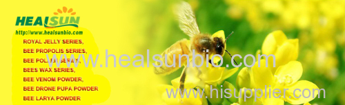 Bee propolis Extract Powder