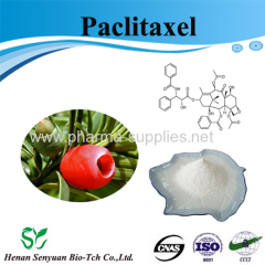 High Quality Paclitaxel powder sales price wholesale service OEM