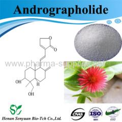 Andrographis Paniculata Extract Andrographolide
