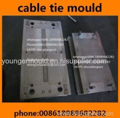 e98a8c171b5a nylon cable tie injection mold manufacturer from China TaiZhou ...