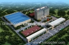 Shandong China Coal Information Company