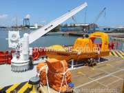 Single Arm Slewing Davit