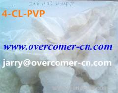 4-CL-PVP 4CL PVP 4-cl-pvp 4cl pvp 4cl pvp 4-CL-PVP 4CL PVP 4CL PVP 4-cl-pvp 4-cl-pvp 4cl-pvp 4CL-PVP 4-CL-PVP poeder