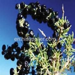 zwarte goji bes organische Chinese zwarte wolfberry agrestal black wolfberry