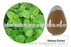 Lemon Balm Leaf Extract Powder