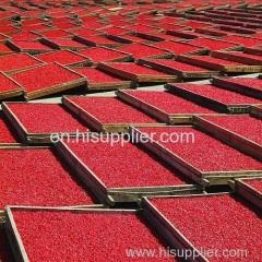 vendita all'ingrosso secca organica bacca di goji wolfberry Nespolo