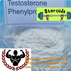 Muscle Growth Steroid Powder Testosterone Phenylpropionate Test P