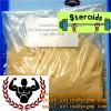 Turinabol steroid powder for Fat Burning Clostebol Acetate