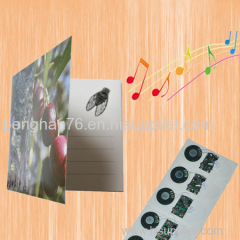 custom sound chip for greeting card