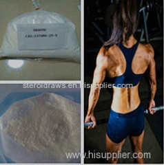 Sr9009 Anabolic Steroid Powder Sr9009 / Sr9011 Sarms for Increases Exercise Endurance