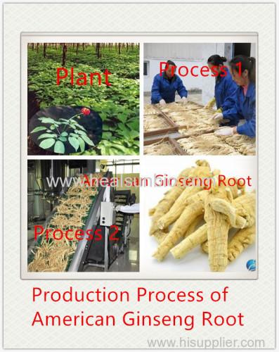 No Pesticide residue American Ginseng Powder